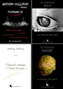 Visuels des expositions de l'artiste plasticien